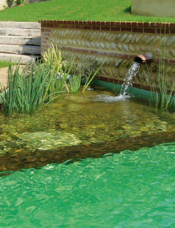 Fish Modern Pond Design