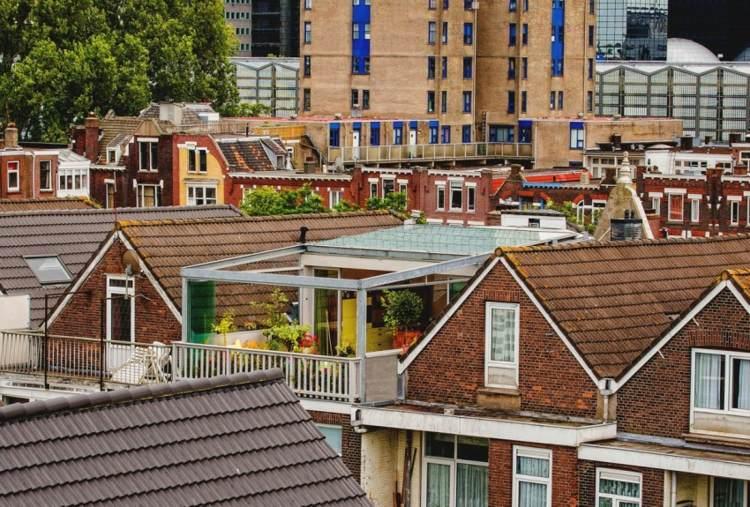 Dachterrasse gestalten und bepflanzen – Umbauprojekt