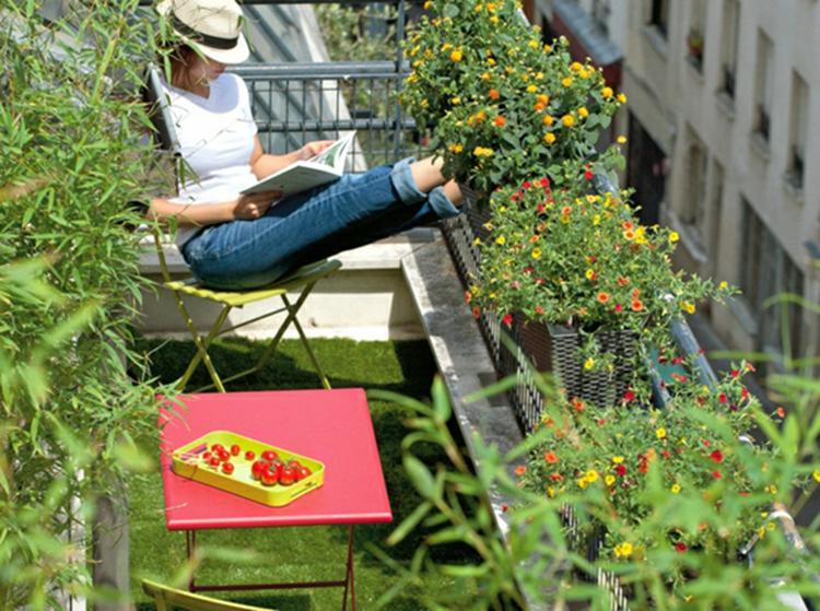 Ide Dco Avec Plantes De Balcon Mme Pendant Lhiver