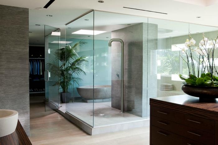 bains design avec douche italienne