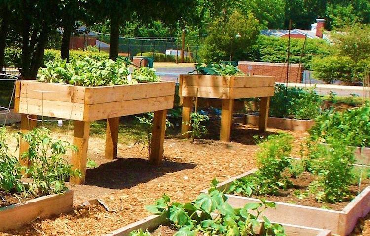 Amenagement Jardin Potager Amenagement Piscine Et Jardin