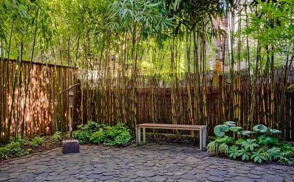 bamboo privacy garden 70 bamboo garden design ideas – how to create a