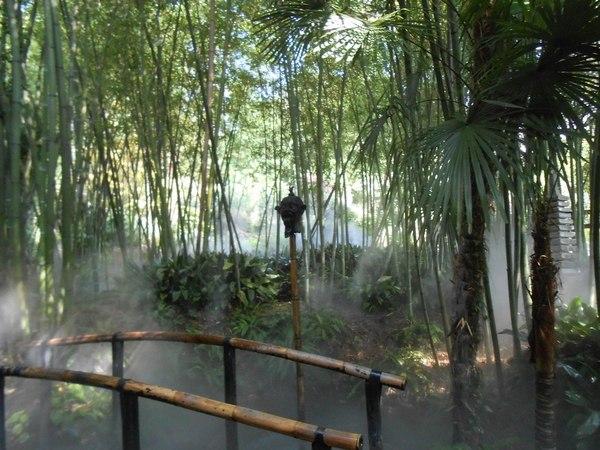 bamboo garden bridge 70 bamboo garden design ideas – how to create a
