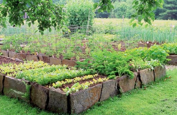 rock raised garden bed ideas DIY Raised beds in the vegetable garden – ideas and materials