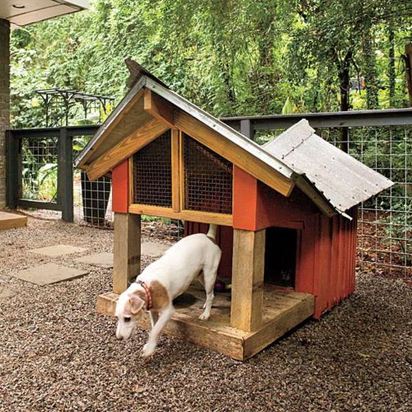 Adorable Dog House Designs For The Comfortable Living Of