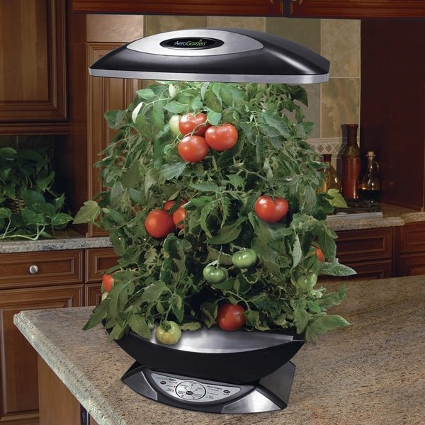 indoor vegetable garden ideas Indoor hydroponic systems – the perfect idea for a home garden