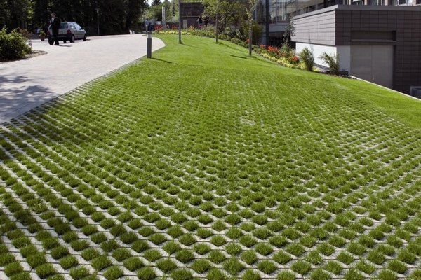 Grass pavers for the driveway, courtyard or the patio on Backyard Pavers And Grass Ideas id=74214