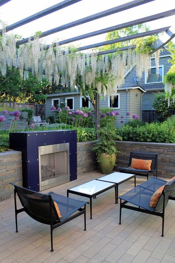 Wisteria vine for the patio landscape - a magnificent ... on Vine Decor Ideas  id=34390