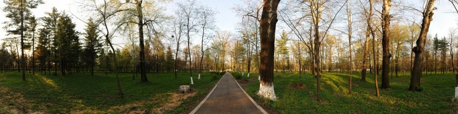 Parcul Gherăiești urmează a fi reabilitat de către Primăria Bacău