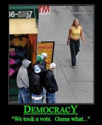 Democracy - We took a vote, Guess what...