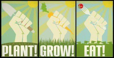 Food - Plant! Grow! Eat!