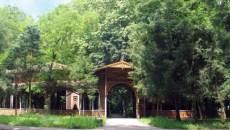 Ediția a V-a a Festivalului Veverițelor, la Buziaș