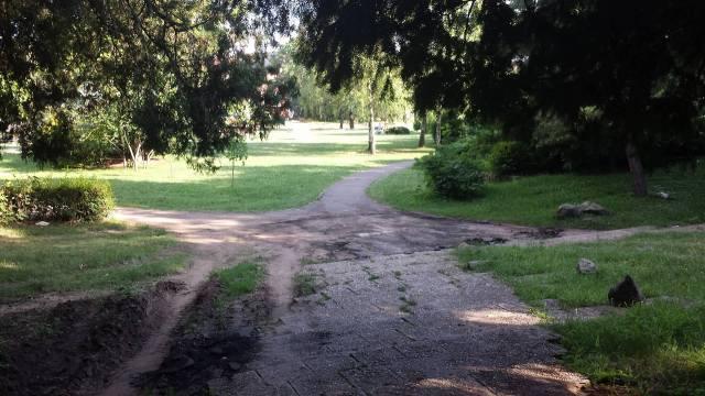 parcul botanic5