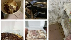Condiții insalubra în bucătăria Dio Eden