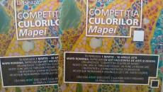 Competiția culorilor Mapei, la Timișoara