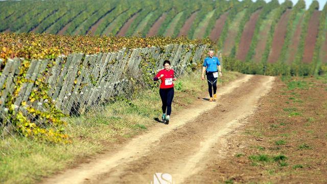 Trail Run Petrovaselo