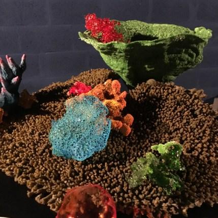 Aquarium.OpenRestaurants1 (2)