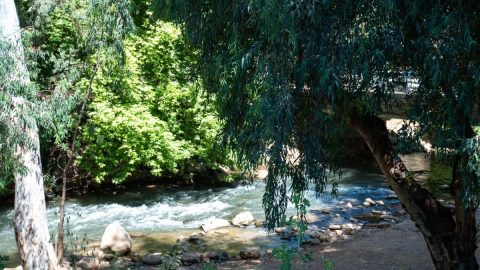 The Witch and the Milkman - Hatzbani River - Not Kosher - River View