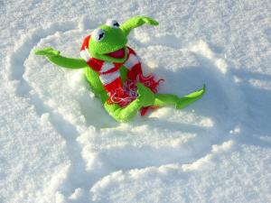 kermit-in snow