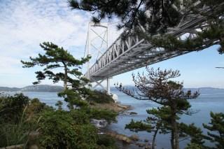 大橋和松樹很合襯