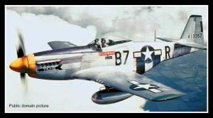 P-51-361public domainframe