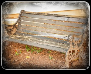 old-bench-pictureframe