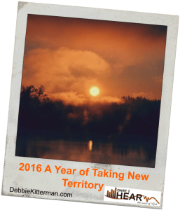 2016 A Year of Taking New Territory BlogPicsmall