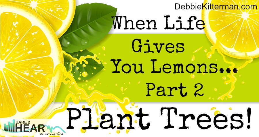 When Life Gives You Lemons…Plant Trees!