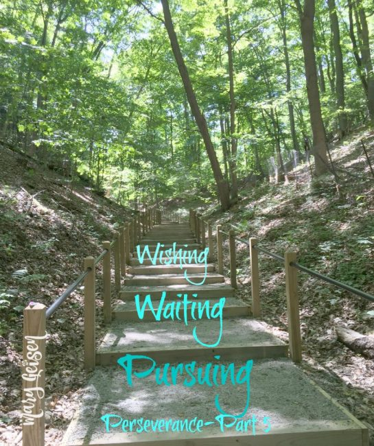 Wishing, Waiting and Pursuing ~ Perseverance Part 5