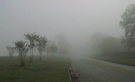 fog9[1]