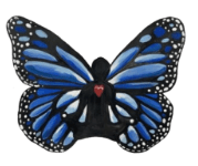 butterfly image - butterfly-image
