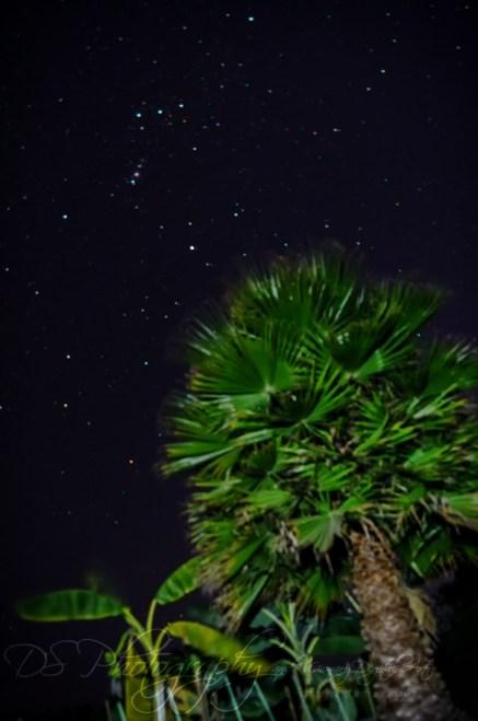 Weekly Photo Challenge: Nighttime 6