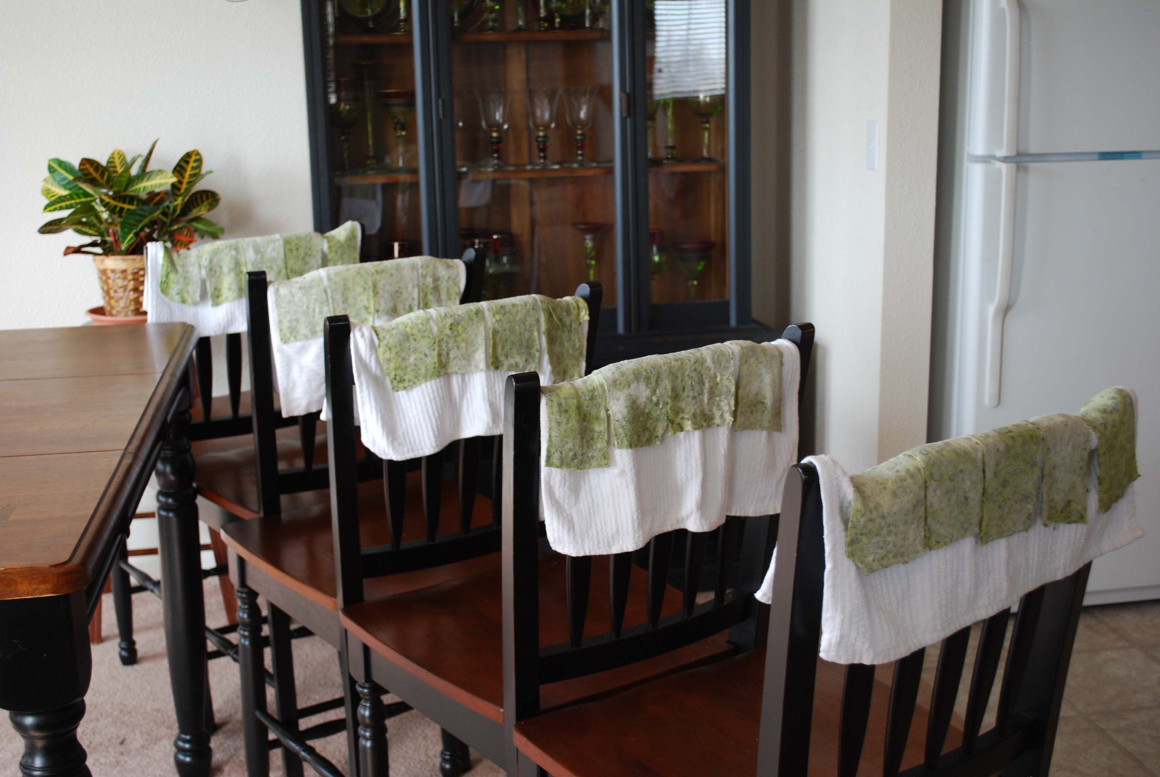 Pasta drying over the backs of dining room chairs!