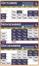 Rol de juegos de Venados de Mazatlán 2010