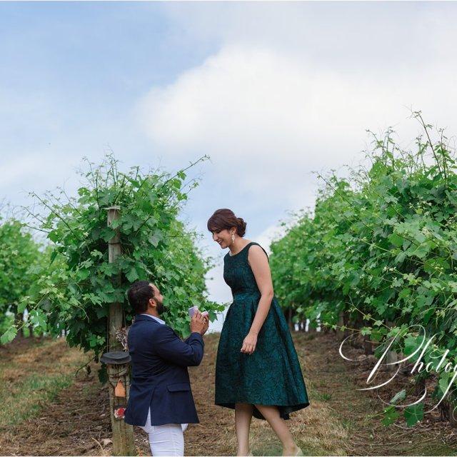 A Surprise Proposal – Jas + Tess
