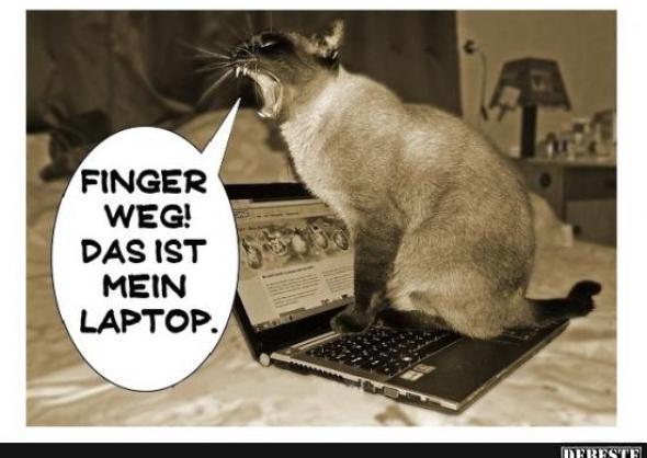 Mein Laptop fühlt sich sexuell belästigt 089DJ Allgemein