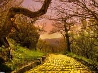 ¿Te atreves a seguir el camino de baldosas amarillas? Descubre este  parque temático basado en El Mago de Oz