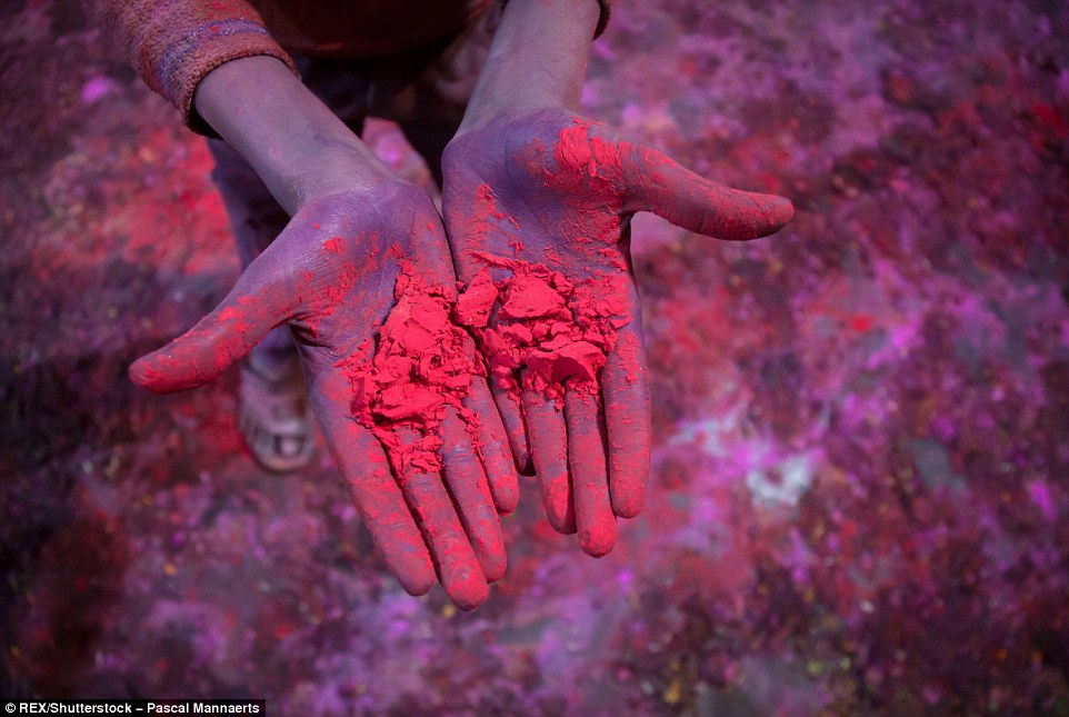 317125D500000578-3458257-Colourful_powder_above_is_placed_smeared_and_thrown_everywhere_o-a-103_1456147994311