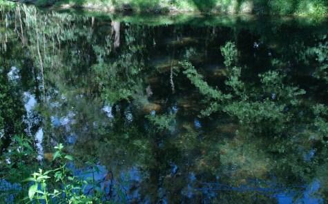 Zen. summer pond reflections photo debiriley.com