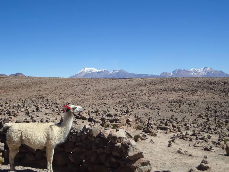 Mochilão pelo Peru. Como organizar? – parte III