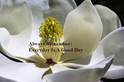always-remember-everyday-is-a-good-day