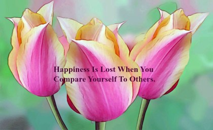 happiness-is-lost-when-you-compare-yourself-to-others