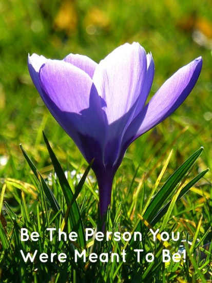 be-the-person-you-were-meant-to-be
