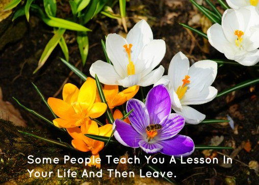 some-people-teach-you-a-lesson-in-your-life-and-then-leave