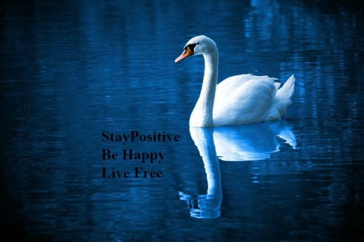 stay-positive-be-happy-live-free