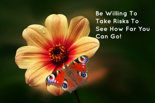 Be Willing To Take Risks To See How Far You Can Go!