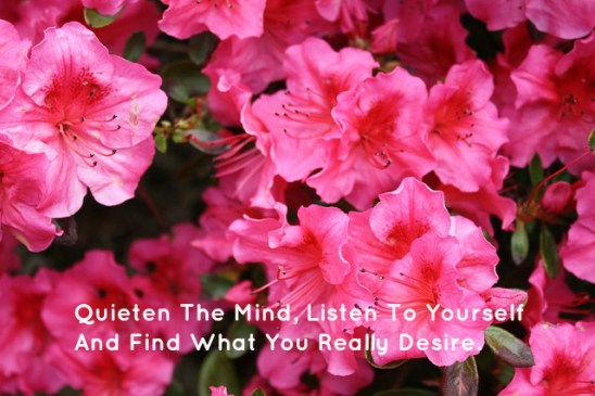 Quieten The Mind, Listen To Yourself And Find What You Really Desire.