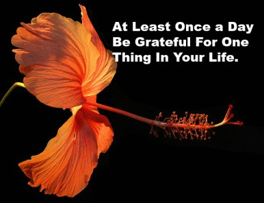 At Least Once a Day Be Grateful For One Thing In Your Life.
