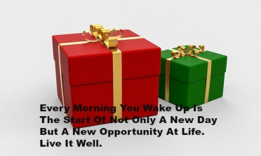 Every Morning You Wake Up Is The Start Of Not Only A New Day But A New Opportunity At Life. Live It Well.