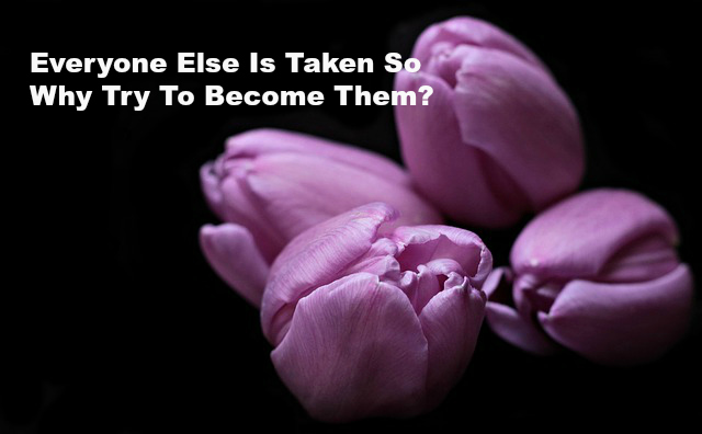 Everyone Else Is Taken So Why Try To Become Them